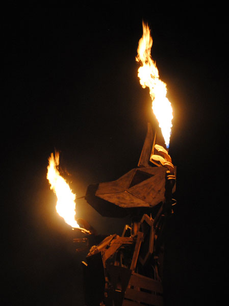 BurningSeed-Kangaroo-1