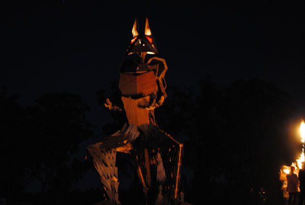 BurningSeed-Kangaroo-3