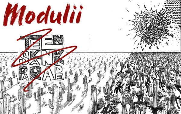 Modulii (band)